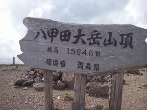 Simgp6924